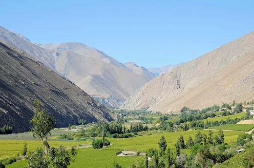 Stock Photo: 1848-430861 Landscape, vineyards, farming, fertile valley, mountains, Pisco Elqui, village, Vicuna, Valle d´Elqui, Elqui Valley, La Serena, Norte Chico, northern Chile, Chile, South America