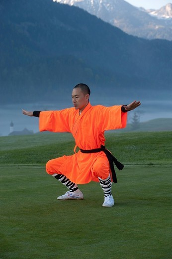 Shaolin monk : Stock Photo