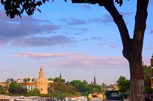 Torre del Oro and Guadalquivir river, Sevilla, Andalusia, Spain, Europe : Stock Photo
