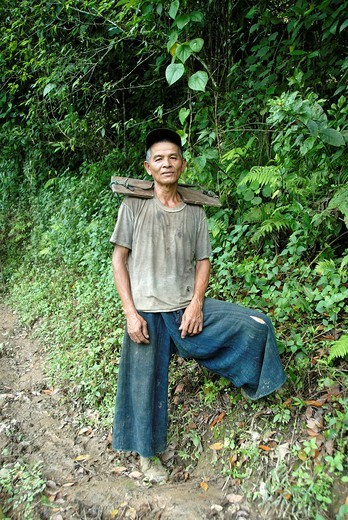 Poverty, Akha Nuqui man in the jungle with a yoke of wood on his shoulders, traditional indigo coloured pants, in the village of Ban Phou Yot, Phongsali province and district, Laos, Southeast Asia, Asia : Stock Photo