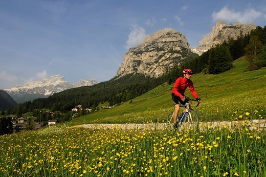 Bike racer near La Villa, Alta Badia, South Tyrol, Italy, Europe : Stock Photo