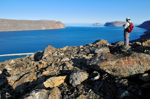 Hiker overlooking Sunshine Fjord, Baffin Island, Nunavut, Canada, Arctic : Stock Photo