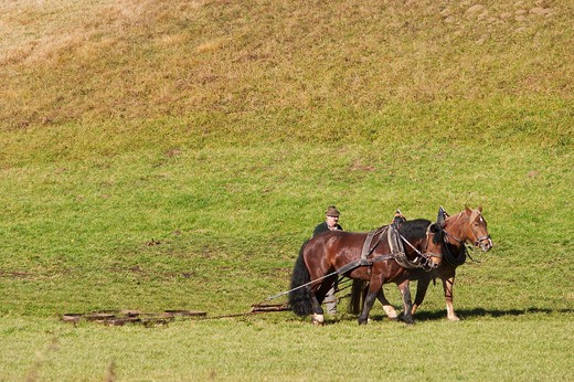 Stock Photo: 1848-441229 Farmer and horses harrowing a field _ Bavaria