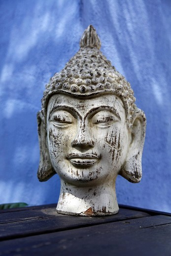 Buddha head, plaster head as decoration in a garden : Stock Photo