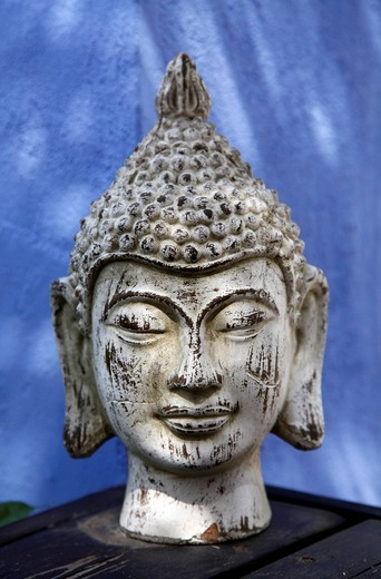 Stock Photo: 1848-447869 Buddha head, plaster head as decoration in a garden