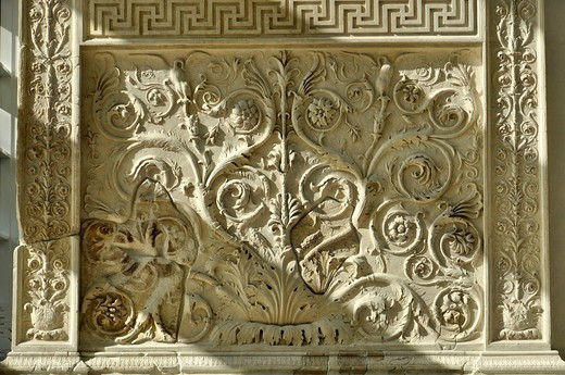Ornamental relief with flora and fauna, Altar of Augustan Peace, Ara Pacis Augustae, westside, Rome, Lazio, Italy, Europe : Stock Photo