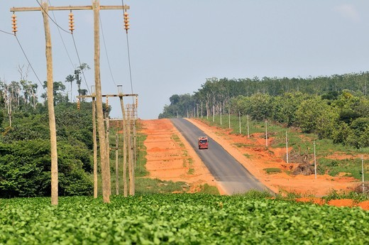 Stock Photo: 1848-449345 Deforestation of the Amazon rainforest for road construction and cultivation of soybeans, the main cause for the progressive destruction of the Amazon rainforest and the most important export product of Brazil, Sinop, Mato Grosso, Brazil, South America
