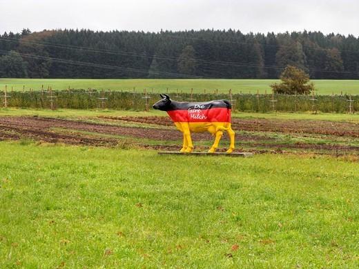 Cow sculpture on farmland, German protest for fair milk price, Chiemgau, Upper Bavaria, Germany, Europe : Stock Photo
