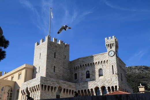 Prince´s Palace with gull, Principality of Monaco, Cote d´Azur, Europe : Stock Photo