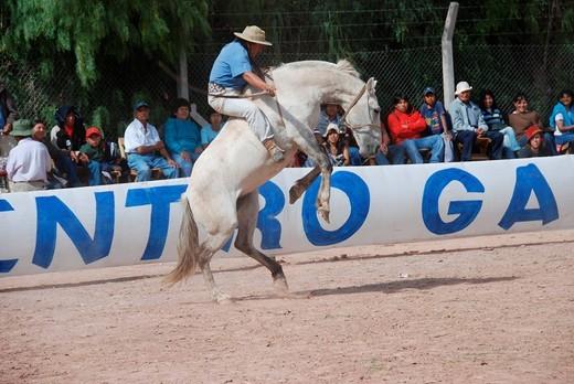 Rodeo de Gauchos, Gaucho rodeo, Crina Limpia, San Salvador de Jujuy, Northwest Argentina, Argentina, South America : Stock Photo