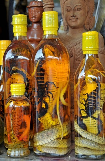 Snake liquor, real cobras and scorpions, for virility and other remedies, chemist in Cambodia, Asia : Stock Photo