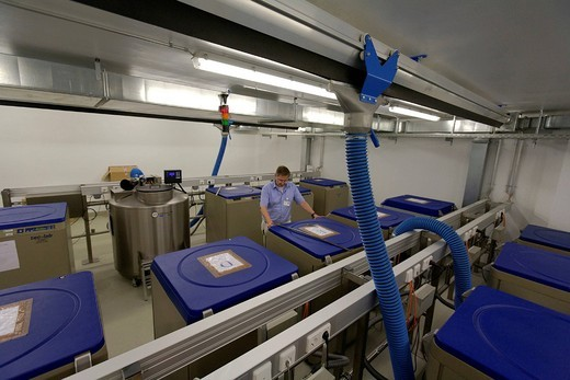 Stem cells stored in nitrogen_tanks, stem cell laboratory at Klinikum Tuebingen hospital, Tuebingen, Baden_Wuerttemberg, Germany, Europe : Stock Photo
