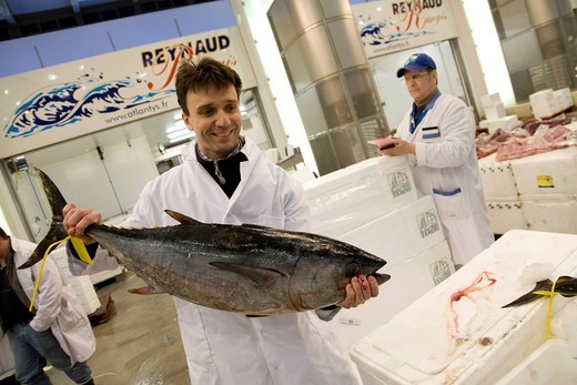 Stock Photo: 1848-456643 Francois PASTEAU, head of the L´Epi Dupin restaurant in the fish hall A4, Produits de la mer et d´eau douce, Rungis wholesale market near Paris, France, Europe