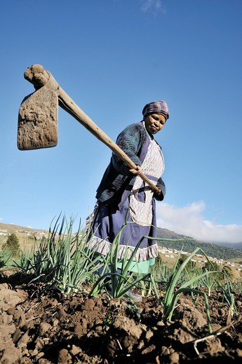 Woman with a hoe doing field work, Cata_Village in the former Homeland Ciskei, Eastern Cape, South Africa, Africa : Stock Photo