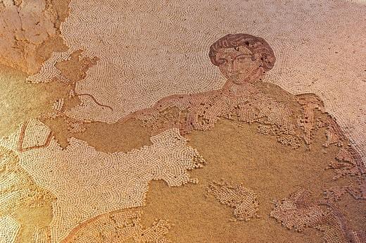 Mosaic at Carranque Roman Archaeological Park, Toledo province, Castile_La Mancha, Spain, Europe : Stock Photo