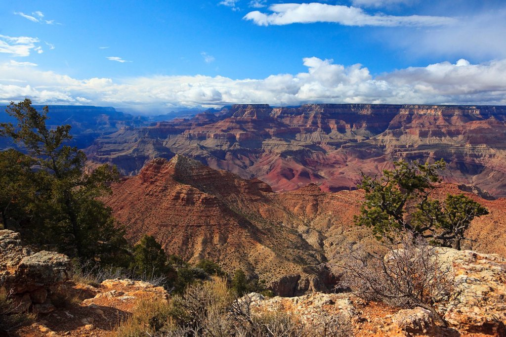 View of the Grand Canyon, Arizona, USA, North America : Stock Photo
