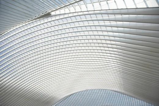 Gare de Liège_Guillemins train station by architect Santiago Calatrava in Liege, Belgium, Europe : Stock Photo