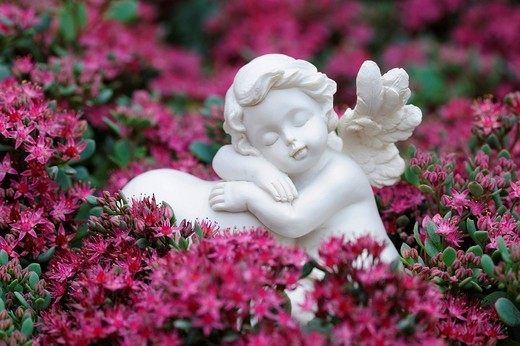 Angel figurine as a garden decoration in a flower bed : Stock Photo