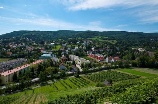 Klosterneuburg and Kahlenberg mountain, Vienna, Austria, Europe : Stock Photo