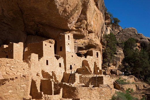 Cliff Palace, cliff dwellings, Anasazi Native American ruins, Mesa Verde National Park, Colorado, America, United States : Stock Photo