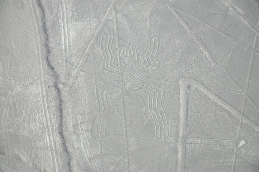 Stock Photo: 1848-462739 Spider, 46m, Nazca Lines, geoglyphs in the desert, Nazca, Peru, South America, Latin America