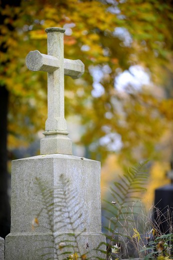 Tombstone with light_colored stone cross in front of colorful autumn leaves, Munich, Bavaria, Germany, Europe : Stock Photo