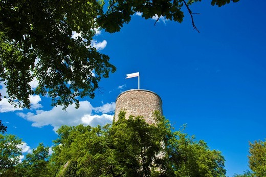 Ruins of Hohennagold Castle, Nagold, Black Forest, Baden_Wuerttemberg, Germany, Europe : Stock Photo