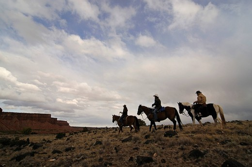 Stock Photo: 1848-465977 Cowgirl, riders at Torrey, Capitol Reef National Park, Utah, USA