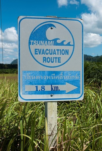 Tsunami warning sign on the beach with direction to escape route, Khao Lak, Phuket, Thailand, Asia : Stock Photo
