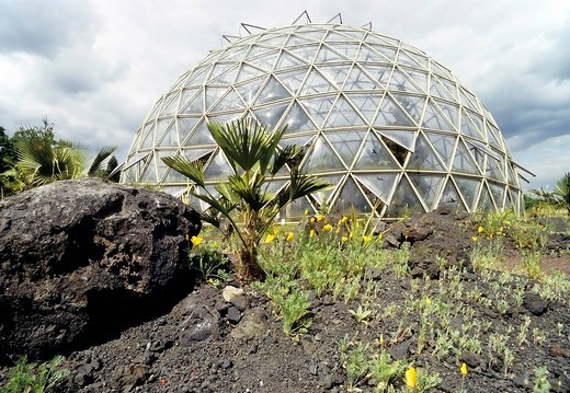 Glass dome greenhouse, botanical garden, Heinrich_Heine_Universitaet university in Duesseldorf, North Rhine_Westphalia, Germany, Europe : Stock Photo