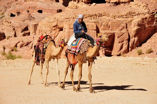 Stock Photo: 1848-468734 Bedouin with camels in the Nabataean city of Petra, Unesco World Heritage Site, near Wadi Musa, Jordan, Middle East, Orient
