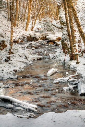 Stock Photo: 1848-469398 Urselbach creek in winter, Taunus, Hesse, Germany, Europe