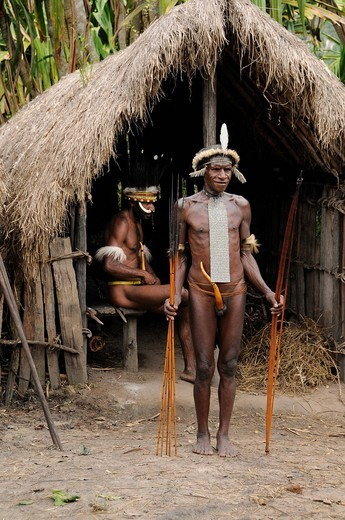 Dani with headdress, bows and arrows, Yiwika, Baliem Valley, Irian Jaya, New Guinea, West Guinea, Indonesia, Southeast Asia, Asia : Stock Photo