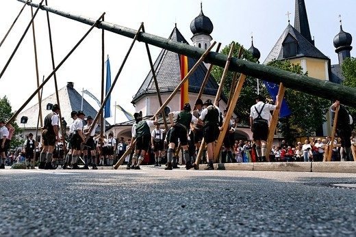 Stock Photo: 1848-470015 Maypole being raised, Prien, Chiemgau, Upper Bavaria, Germany, Europe