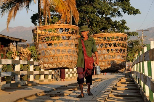 Stock Photo: 1848-474491 Intha porter with yoke baskets on the bridge crossing the Nan Chaung main canal, Nyaungshwe or Nyaung Shwe, Inle Lake, Shan State, Myanmar, Southeast Asia, Asia