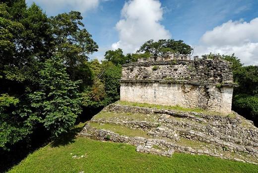 Stock Photo: 1848-47672 Maya site Yaxchilan, Selva Lacandona, Lakandonian Forest, Chiapas, Mexico