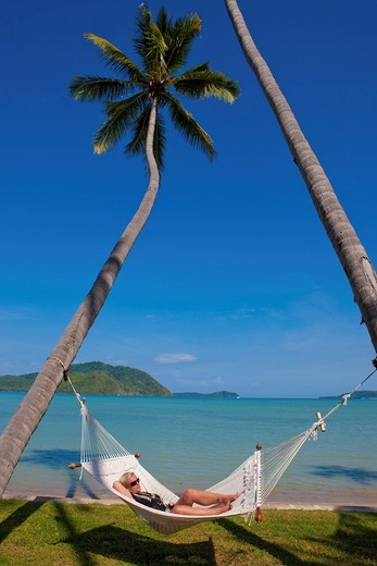 Woman lying in a hammock hanging between two palm trees, Phuket, Thailand, Asia : Stock Photo
