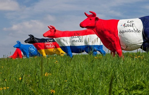 Farmer protest for fairer milk prices in the European Union, cows are painted in different national colours, Lower Austria, Austria, Europe : Stock Photo