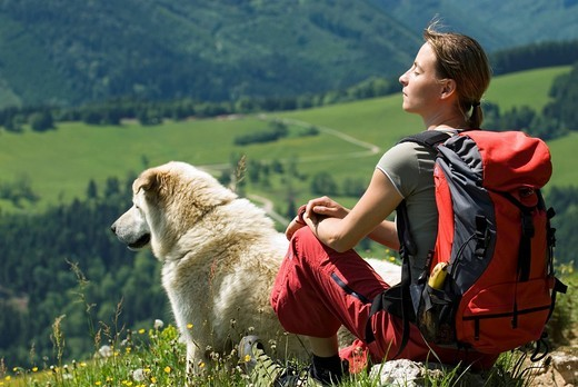 Young woman hiking with dog, Kalkalpen National Park, Upper Austria, Austria, Europe : Stock Photo
