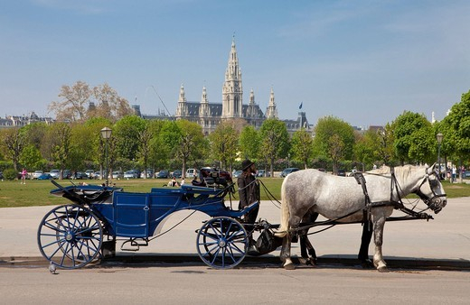 Fiaker carriage, int he back the city hall, Heldenplatz Heroes´ Square, Vienna, Austria, Europe : Stock Photo
