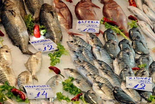 Fish sales, market quarter, market halls, Thessaloniki, Chalkidiki, Macedonia, Greece, Europe : Stock Photo