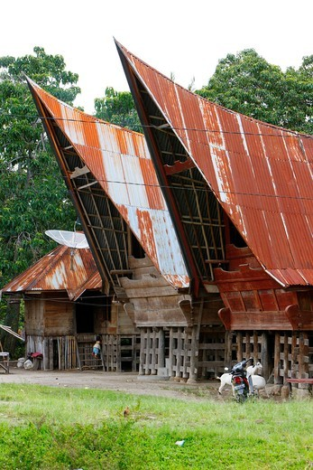 Batak houses, Samosir island, Lake Toba, Batak region, Sumatra, Indonesia, Asia : Stock Photo