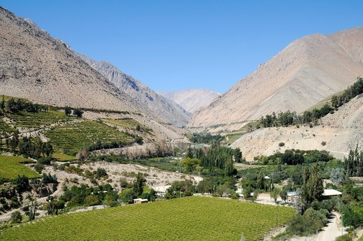 Stock Photo: 1848-478107 Landscape, vineyards, farming, fertile valley, desert mountains, Monte Grande, village, Vicuna, Valle d´Elqui, Elqui Valley, La Serena, Norte Chico, northern Chile, Chile, South America