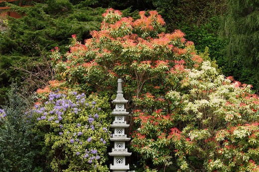 Japanese Garden, Powerscourt Garden, garden of Powerscourt House, County Wicklow, Republic of Ireland, British Isles, Europe : Stock Photo