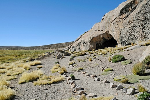 Stock Photo: 1848-479696 Trail, vegetation, mountains, Las Cuevas caves, Conaf Station, Lauca National Park, Altiplano, Norte Grande, Northern Chile, Chile, South America