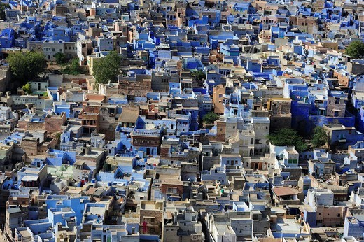 Brahmapuri, Blue City, settlement of Brahmins, district of Jodhpur, Rajasthan, India, Asia : Stock Photo