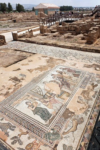 Floor mosaic in the House of Aion, Roman settlement, excavation site, Paphos, Southern Cyprus, Greek Cyprus, Southern Europe : Stock Photo