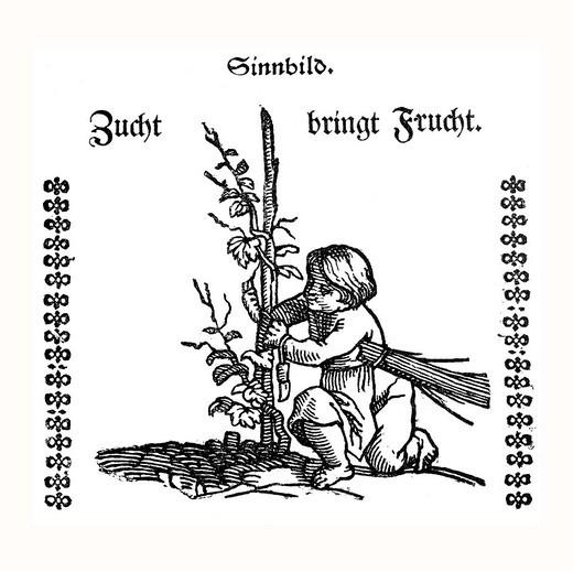 Allegorical depiction, Zucht bringt Frucht, breeding bears fruit, historic depiction in Deutsche Literaturgeschichte, a history of German literature, from 1885 : Stock Photo
