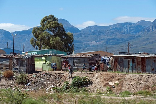 Makeshift huts in a township outside of Wellington, Western Cape, South Africa, Africa : Stock Photo