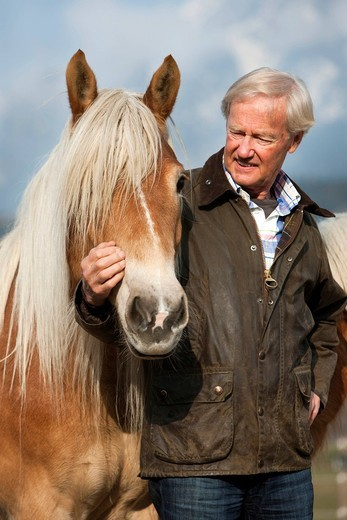 Stock Photo: 1848-482944 Agile senior with his Haflinger horses, Weer, North Tyrol, Austria, Europe